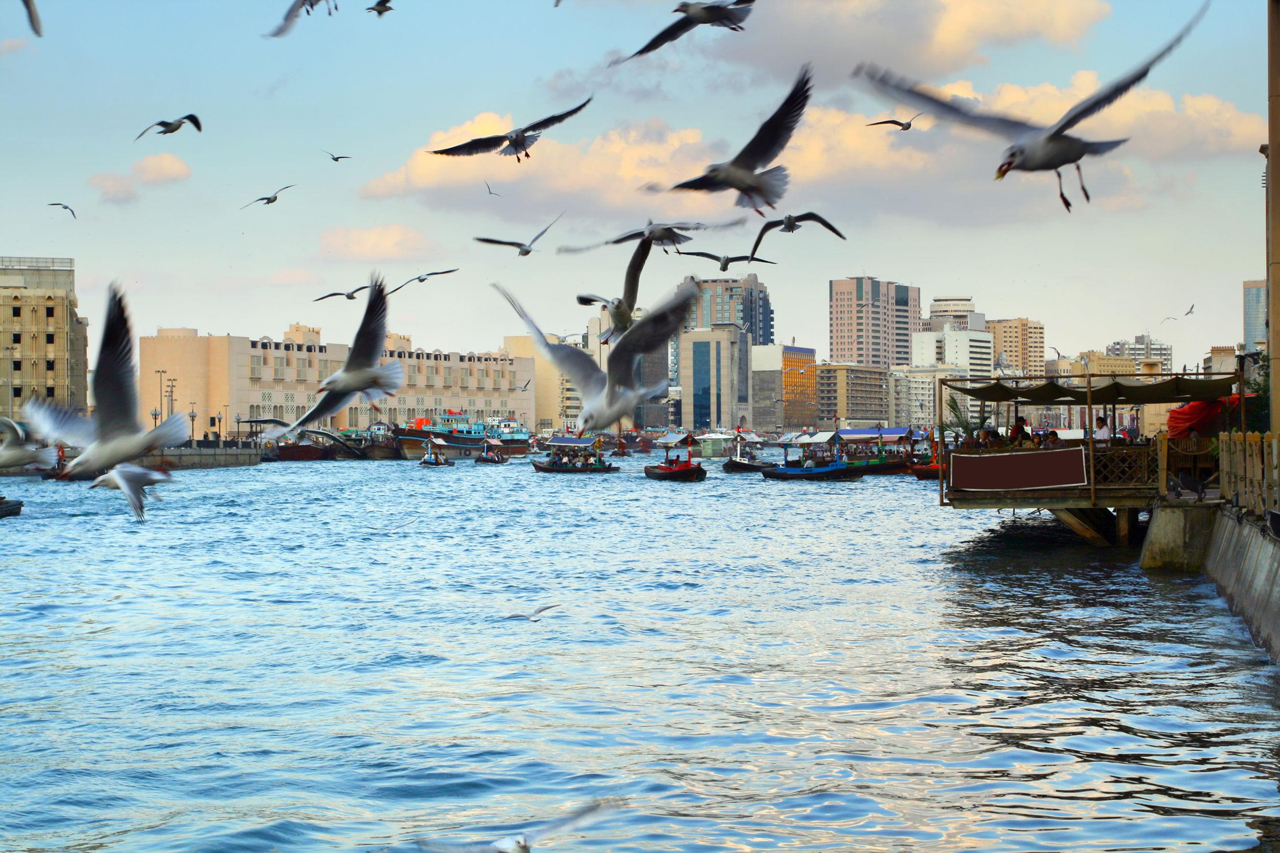Dubai Creek Khor Dubai